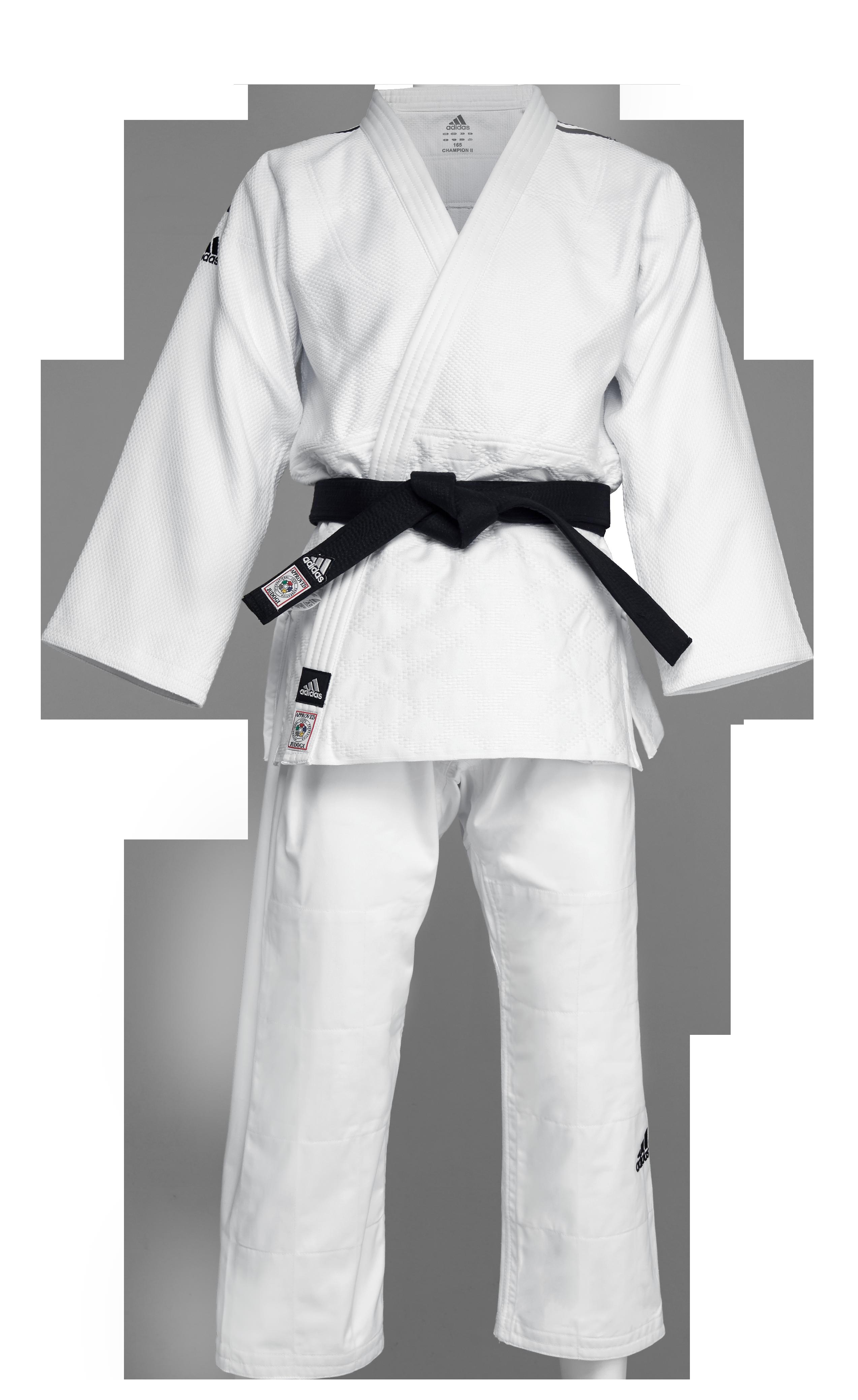 26351fdc6 IJF Champion 2 White